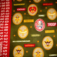 Boy Scout Fabric